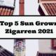Top 5 Sun Grown Zigarren 2021